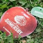 Somersby 025-2